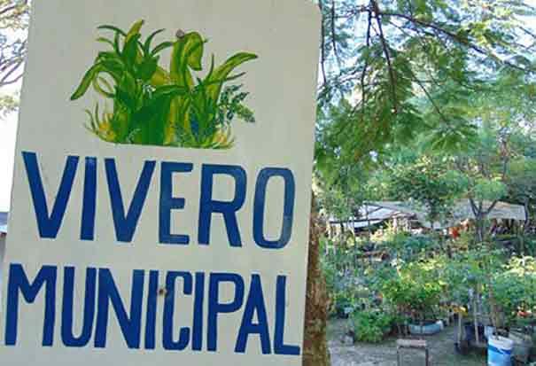 Caram visito el vivero municipal para conocer los for Vivero municipal